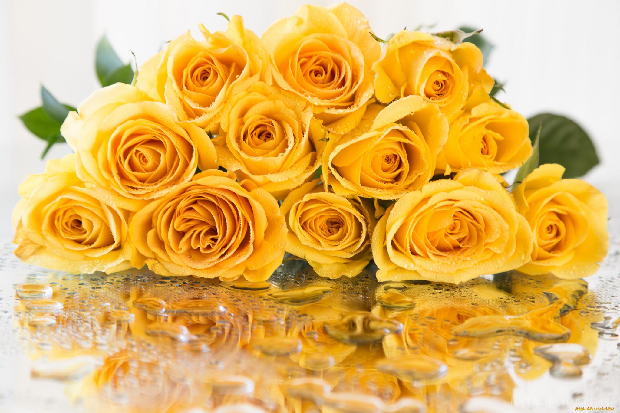 волокна открытки с желтыми цветами обожает своих деток